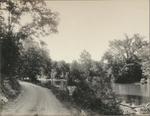 Mountain Pine-Cedar Glades Road
