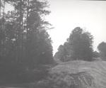 Magnolia Pipeline Crossing at Nubbin Ridge Road