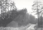Dirt Road 1979
