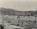Eagleton Mill Site