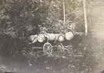 Two Log Wagons