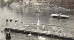 12 Girls Diving